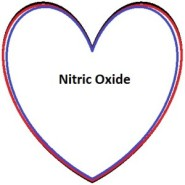 The-Nitric-Oxide-Supplements-Online-300x300