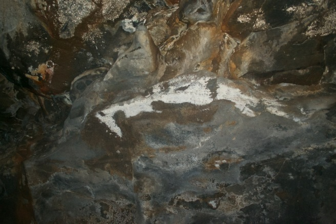 Inside the Flagstaff Lava River Cave